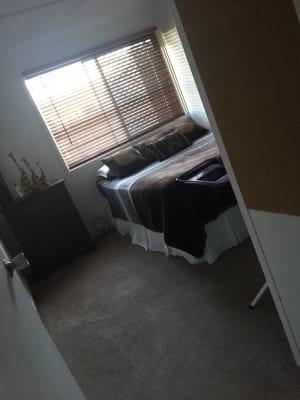 $160, Share-house, 4 bathrooms, Ash Street, Slade Point QLD 4740