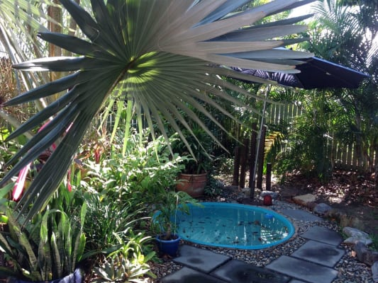 $140, Share-house, 5 bathrooms, Collinson St, Cairns North QLD 4870