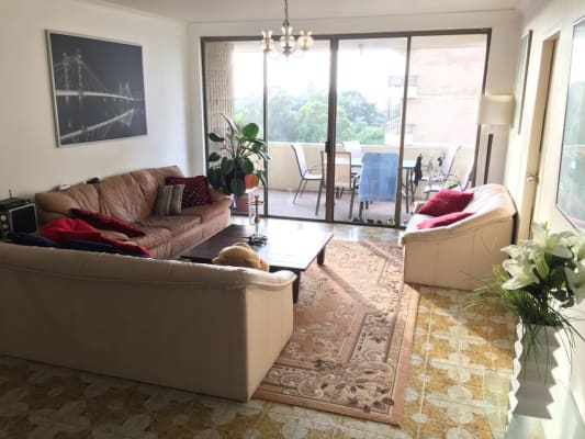 $300, Flatshare, 3 bathrooms, Council Street, Bondi Junction NSW 2022