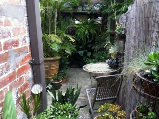$260, Share-house, 4 bathrooms, Greens Road, Paddington NSW 2021