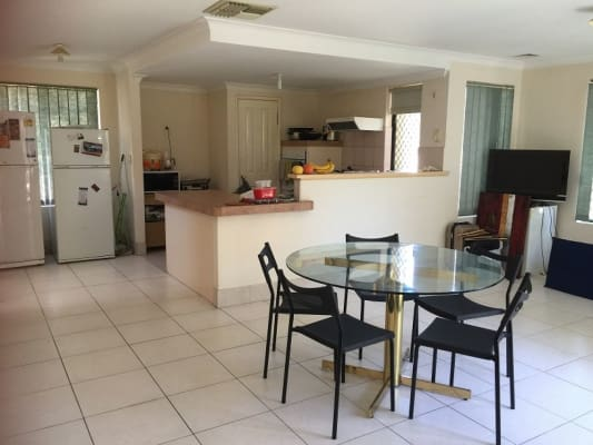 $160, Share-house, 4 bathrooms, Marquis Street, Bentley WA 6102