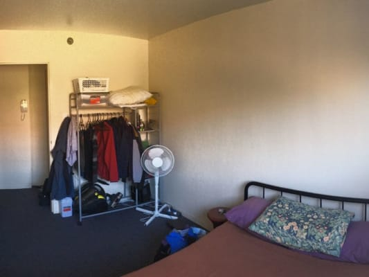 $260, Flatshare, 2 bathrooms, Morehead  , Redfern NSW 2016