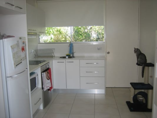 $420, Flatshare, 2 bathrooms, Oxford Terrace, Taringa QLD 4068