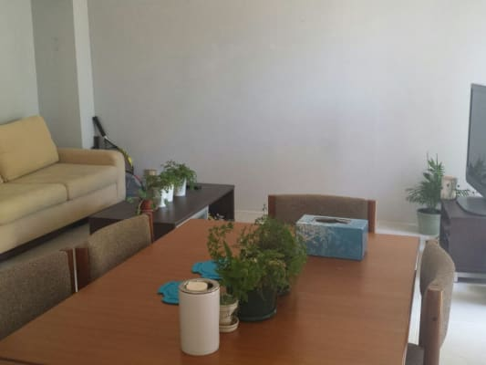 $200, Share-house, 3 bathrooms, Reid Ave, Westmead NSW 2145