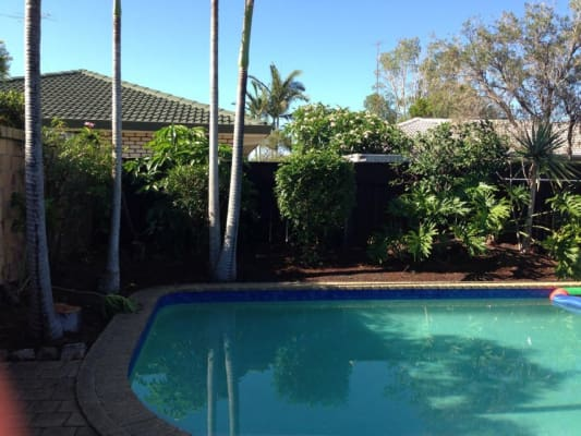 $185, Share-house, 4 bathrooms, Rumrunner Street, Mermaid Waters QLD 4218