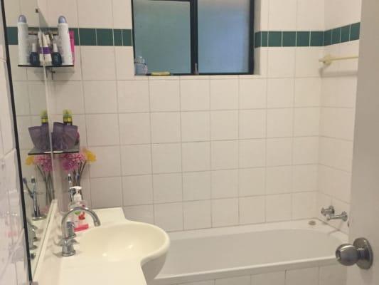 $350, Flatshare, 2 bathrooms, Todman Ave, Kensington NSW 2033