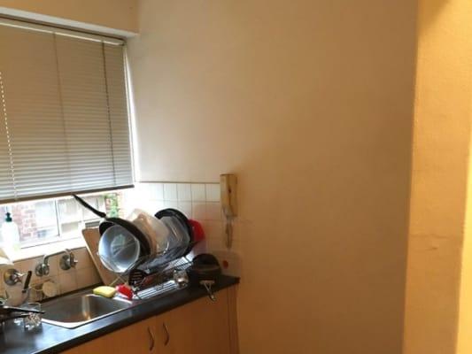 $230, Flatshare, 2 bathrooms, Todman Avenue, Kensington NSW 2033