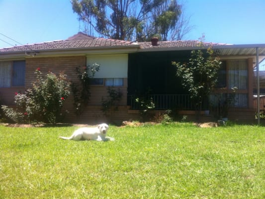$200, Share-house, 3 bathrooms, Algie Cresent, Kingswood NSW 2747