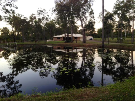 $150, Share-house, 4 bathrooms, Bluebell Road East, Tinana QLD 4650