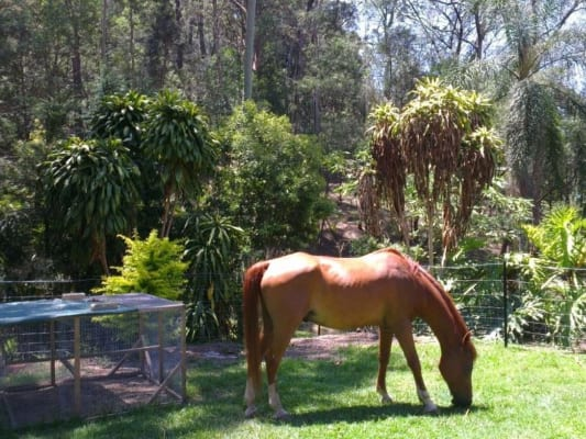 $200, Share-house, 3 bathrooms, Carapook Crescent, Tallebudgera QLD 4228