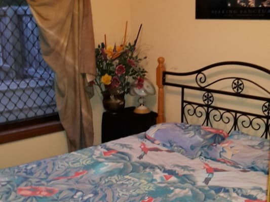 $160, Share-house, 1 bathroom, Dalton , Southport QLD 4215
