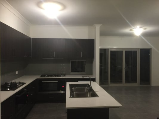 $250, Share-house, 6 bathrooms, Stockdale Avenue, Clayton VIC 3168