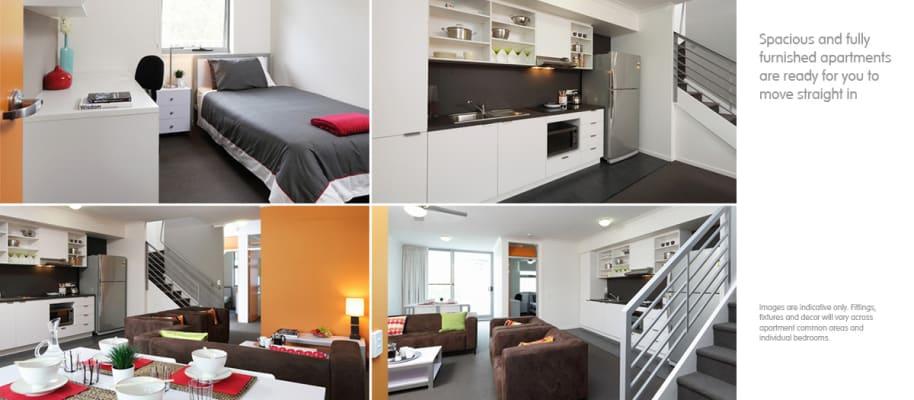 $300, Student-accommodation, 1 bathroom, Blamey Street, Kelvin Grove QLD 4059