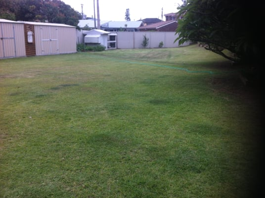 $350, Share-house, 3 bathrooms, Swadling Street, Toowoon Bay NSW 2261