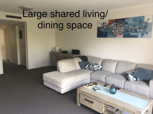 $360, Flatshare, 2 bathrooms, Lithgow Street, St Leonards NSW 2065