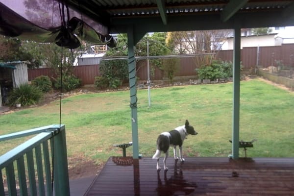 $210, Share-house, 3 bathrooms, Green Street, Telarah NSW 2320