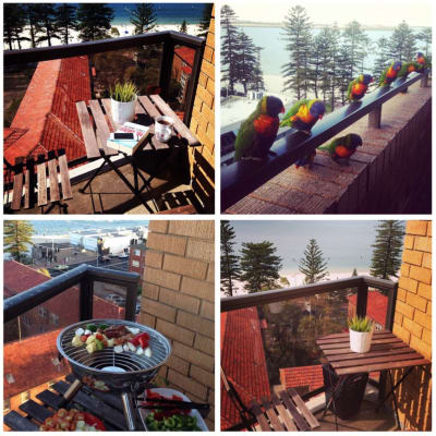 $250, Flatshare, 3 bathrooms, The Boulevarde, Brighton-Le-Sands NSW 2216