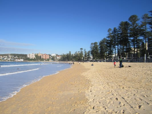 $400, Flatshare, 3 bathrooms, Raglan Street, Manly NSW 2095