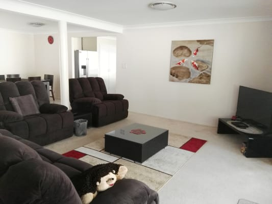 $180, Share-house, 4 bathrooms, Springwood Road, Springwood QLD 4127