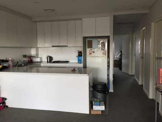 $210, Flatshare, 3 bathrooms, New Canterbury Road, Dulwich Hill NSW 2203