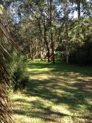 $100, Share-house, 3 bathrooms, The Lakes Way, Charlotte Bay NSW 2428
