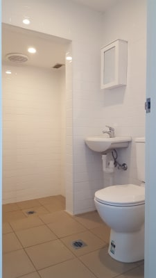 $300, Granny-flat, 1 bathroom, Liverpool Road, Strathfield South NSW 2136