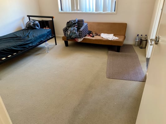 $135-170, Share-house, 2 rooms, Elmwood Circuit, Springfield Lakes QLD 4300, Elmwood Circuit, Springfield Lakes QLD 4300
