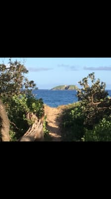 $200-300, Share-house, 2 rooms, Island Lane, Sapphire Beach NSW 2450, Island Lane, Sapphire Beach NSW 2450