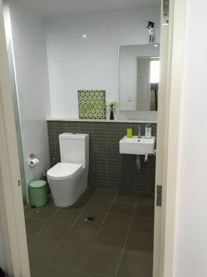 $300, Flatshare, 2 bathrooms, Mashman Avenue, Kingsgrove NSW 2208
