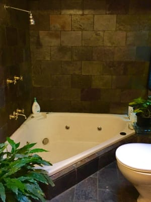 $280, Share-house, 3 bathrooms, Union Street, Erskineville NSW 2043