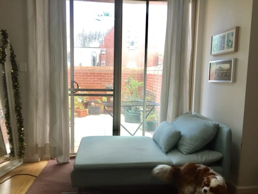 $300-310, Share-house, 2 rooms, Botany Road, Botany NSW 2019, Botany Road, Botany NSW 2019