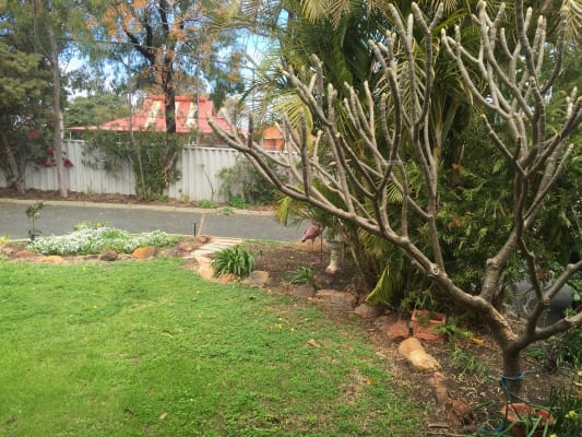 $180, Share-house, 2 bathrooms, Windsor Road, East Fremantle WA 6158