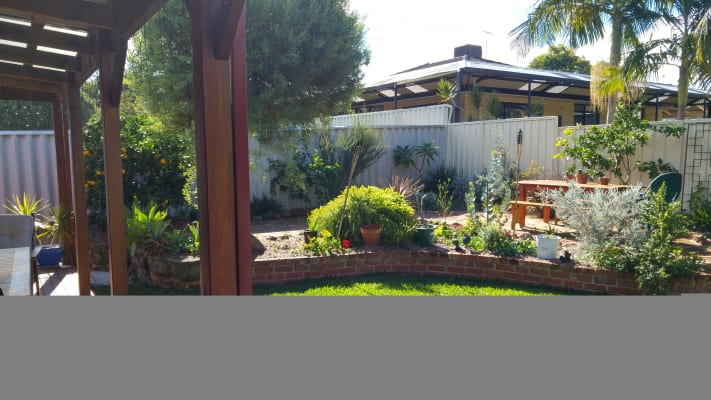 $150, Share-house, 3 bathrooms, Menas Place, Coolbellup WA 6163