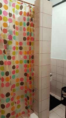 $300, Studio, 1 bathroom, Toyer Street, Tempe NSW 2044