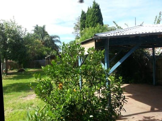$230, Share-house, 4 bathrooms, Thomas Street, Ashfield NSW 2131
