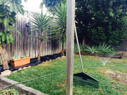 $350, Share-house, 2 bathrooms, Marville Avenue, Kingsford NSW 2032
