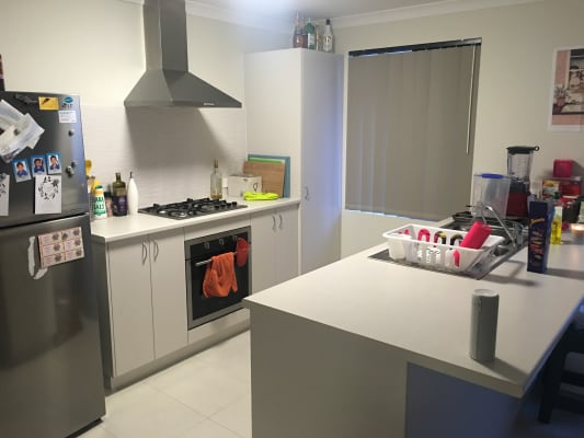 $160, Share-house, 3 bathrooms, Walpole Street, Bentley WA 6102