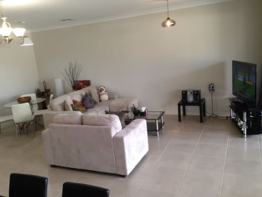 $195, Share-house, 3 bathrooms, Fern Grove, Seacombe Gardens SA 5047