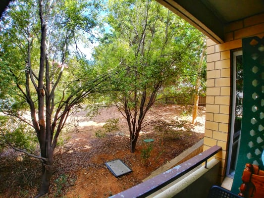 $100, Flatshare, 3 bathrooms, Young Street, Wayville SA 5034