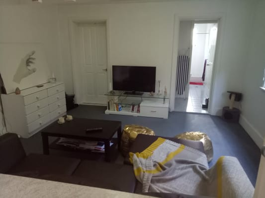 $390, Flatshare, 2 bathrooms, Thornley Street, Leichhardt NSW 2040