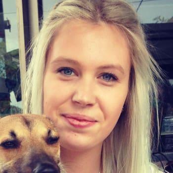 Alison, Female 25yrs, $240, No children and Non-smoker