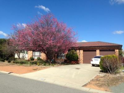 Share House - Canberra, Gordon $190