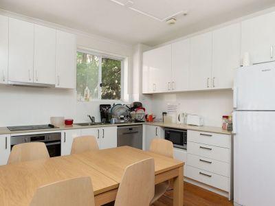 Share House - Sydney, Camperdown $300